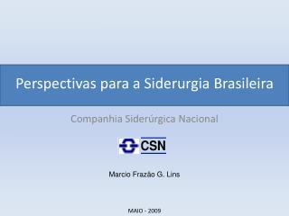 Perspectivas para a Siderurgia Brasileira