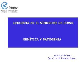 LEUCEMIA EN EL S NDROME DE DOWN                                GEN TICA Y PATOGENIA