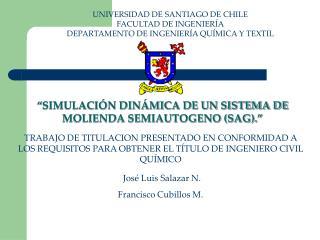 UNIVERSIDAD DE SANTIAGO DE CHILE FACULTAD DE INGENIER A DEPARTAMENTO DE INGENIER A QU MICA Y TEXTIL