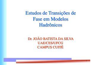 Estudos de Transi  es de Fase em Modelos Hadr nicos