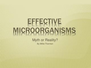 Effective Microorganisms