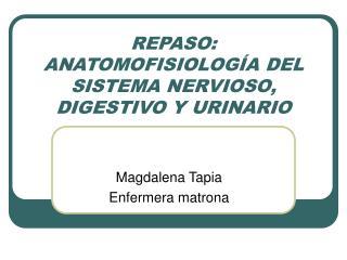 REPASO: ANATOMOFISIOLOG A DEL SISTEMA NERVIOSO, DIGESTIVO Y URINARIO