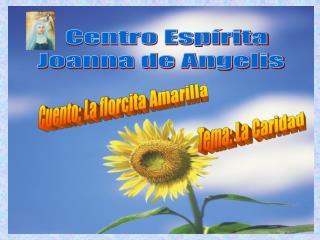 Centro Esp rita   Joanna de Angelis