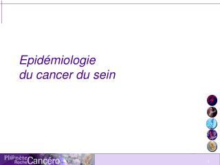 Epid miologie  du cancer du sein