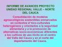 INFORME DE AVANCES PROYECTO UNIDAD REGIONAL VALLE   NORTE DEL CAUCA