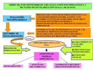 ORDEN DE 19 DE SEPTIEMBRE DE 2.002: EVALUACI N PSICOPEDAG GICA Y DICT MEN DE ESCOLARIZACI N B.O.J.A. DE 26-10-02