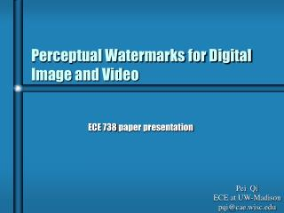 Perceptual Watermarks for Digital Image and Video