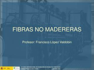 FIBRAS NO MADERERAS