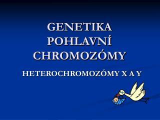 GENETIKA POHLAVN  CHROMOZ MY