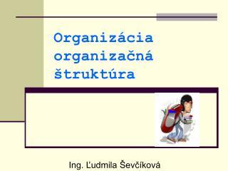 Organiz cia organizacn   trukt ra