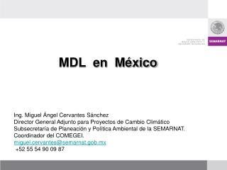 MDL  en  M xico