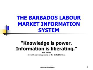 THE BARBADOS LABOUR MARKET INFORMATION SYSTEM