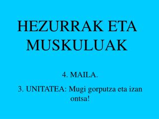 HEZURRAK ETA MUSKULUAK