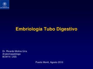 Embriolog a Tubo Digestivo