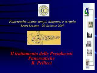 Pancreatite acuta: tempi, diagnosi e terapia Sestri Levante - 20 Gennaio 2007