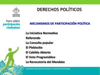 MECANISMOS DE PARTICIPACI N POL TICA  La Iniciativa Normativa Referendo La Consulta popular El Plebiscito El Cabildo Abi