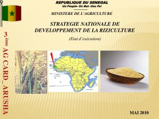 STRATEGIE NATIONALE DE DEVELOPPEMENT DE LA RIZICULTURE Etat d ex cution
