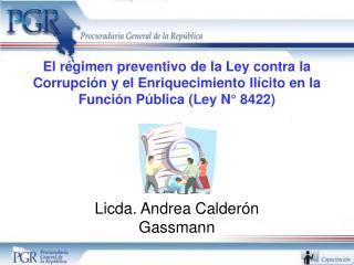 El r gimen preventivo de la Ley contra la Corrupci n y el Enriquecimiento Il cito en la Funci n P blica Ley N  8422