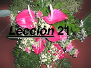 Lecci n 21