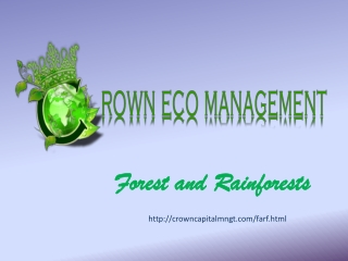 Crown Capital Eco Management Jakarta Indonesia: Forest and R