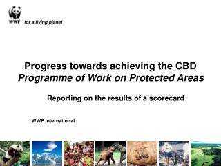 Progress towards achieving the CBD Programme of Work on Protected Areas