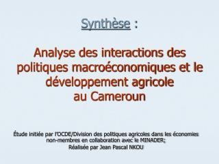 Synth se :   Analyse des interactions des politiques macro conomiques et le d veloppement agricole  au Cameroun