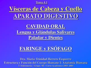 V sceras de Cabeza y Cuello APARATO DIGESTIVO  CAVIDAD ORAL Lengua y Gl ndulas Salivares Paladar y Dientes  FARINGE y ES
