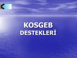KOSGEB DESTEKLERI