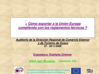 C mo exportar a la Uni n Europa  cumpliendo con los reglamentos t cnicos     Auditorio de la Direcci n Regional de Com