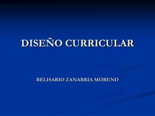 DISE O CURRICULAR  BELISARIO ZANABRIA MORENO