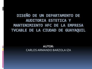 DISE O DE UN DEPARTAMENTO DE AUDITORIA ESTETICA Y MANTENIMIeNTO HFC DE LA EMPRESA TVCABLE DE LA CIUDAD DE GUAYAQUIL