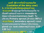 10  Lactation of the dairy cow 1.  -  mesoderm mammary bud   Primary sprout  80 - secondary sprout , gland  teat cister