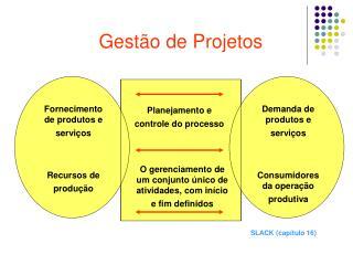 Gest o de Projetos
