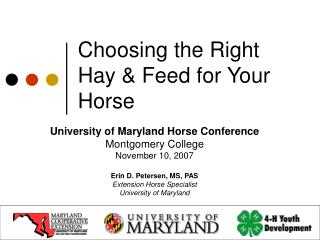 Choosing the Right Hay  Feed for Your Horse