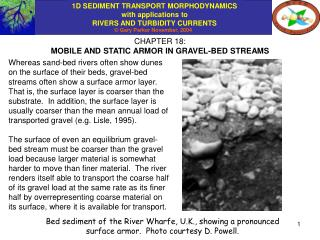 CHAPTER 18: MOBILE AND STATIC ARMOR IN GRAVEL-BED STREAMS