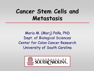 Cancer Stem Cells and Metastasis