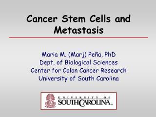 Cancer Stem Cells and Metastasis