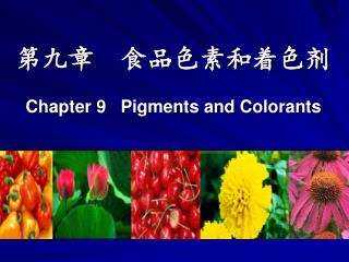 Chapter 9   Pigments and Colorants