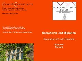 Depression und Migration  Depression hat viele Gesichter  20.08.2008 Steinfurt