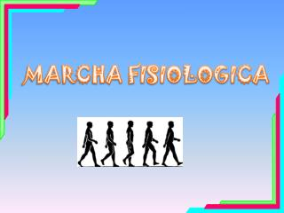 MARCHA FISIOLOGICA