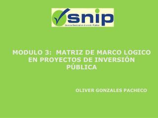 MODULO 3:  MATRIZ DE MARCO LOGICO EN PROYECTOS DE INVERSI N  P BLICA