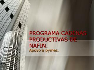 PROGRAMA CADENAS PRODUCTIVAS DE NAFIN.