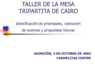 TALLER DE LA MESA  TRIPARTITA DE CAIRO  Identificaci n de prioridades, valoraci n  de avances y propuestas futuras