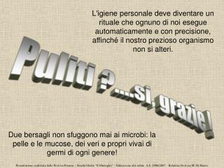 Presentazione realizzata dalla Prof.ssa Pianese   Scuola Media  N.Martoglio    Educazione alla salute  A.S. 2006