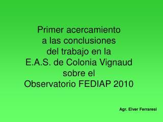 Primer acercamiento a las conclusiones del trabajo en la E.A.S. de Colonia Vignaud sobre el Observatorio FEDIAP 2010
