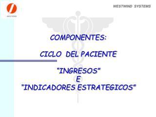 COMPONENTES:  CICLO  DEL PACIENTE   INGRESOS  E  INDICADORES ESTRATEGICOS