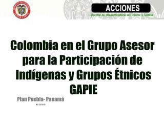Colombia en el Grupo Asesor  para la Participaci n de  Ind genas y Grupos  tnicos GAPIE