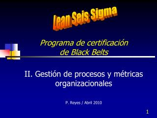 Programa de certificaci n  de Black Belts