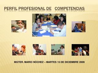 PERFIL PROFESIONAL DE   COMPETENCIAS