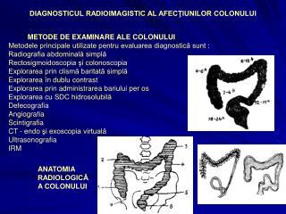 DIAGNOSTICUL RADIOIMAGISTIC AL AFECTIUNILOR COLONULUI